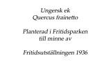 planteringsvnnerna