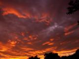 6-5-2017 Glorious Sunset 6