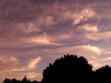 2017 June   21   Cirrus Clouds  009