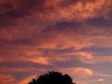 2017 June   21   Cirrus Clouds  033