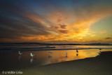 Sunset HB River 11-29-17 51 flash.jpg