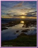 Sunrise Magnolia Preserve HDR 1-10-18 (10) Frame.jpg