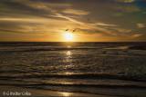 Sunset HB 1-25-18 (4) Gulls.jpg