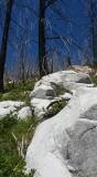 Ram Ck Trail.jpg