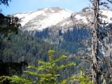 3 - Wenatchee National Forest.jpg