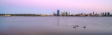 Black Swans on the Swan River at Sunrise, 28th January 2014