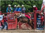 Alvinston Rodeo