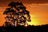 sunrise_and_sunset