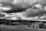 Caseberry Downs in Devon