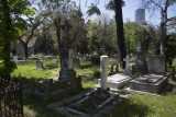 Istanbul Protestant Cemetery march 2017 3692.jpg