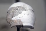 Antalya museum Neanderthal part march 2018 5765.jpg