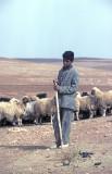 Urfa 1997 Desert tour 130.jpg