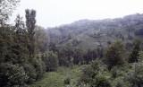Rize Tea country 2002 134.jpg