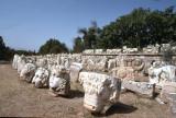 Afrodisias museum spare parts