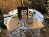 Painting today in garden my nearly finished Owl