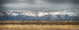 Monte Vista, Colorado - National Wildlife Refuge