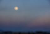 Soft Moonlight