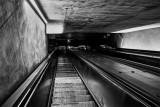 Transit Bowel