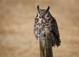 Monte Vista, Colorado - National Wildlife Refuge