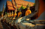 Ayutthaya Grounds
