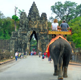 Arrival by Elephant