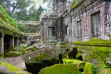 Moss Covered Ruins