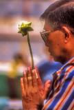 Prayer & Lotus Offering