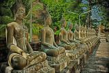 Buddhas at Ayutthya