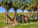 Giraffe Compiund
