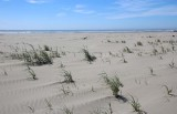 21 a wide wind waved beach