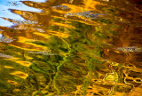 Pond abstract reflections in Scotland
