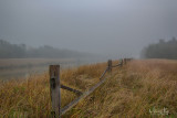 Fence in fog 11.29.17.jpg