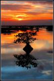 Florida East Coast Sunrise