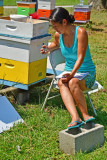 Bee-watch-7485