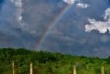 CUBA_3040 Cuban rainbow