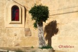 Canon-G7-X-Mark-II-Malta-travel-photo_25.JPG