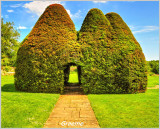 The Topiary House