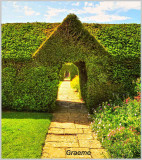 Topiary Archways