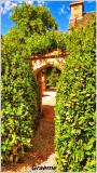 Great Chalfield Manor & Garden