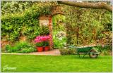 Wheel Barrow and Plant Pots