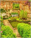 Pond and Window