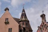 Alsace Cigognes