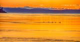 Five Ducks Sunset