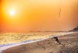 Sunset Javelin Practice
