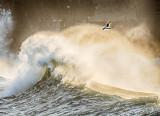 Wild Atlantic Wave