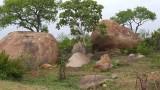 Kruger Park view