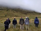 Lesotho birding