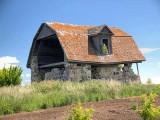 Old farm building 9675