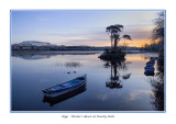 Ireland - Co Sligo - Sligo - Dawn on Lough Gill at Doorly Park