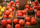 NT farmer market
